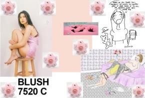 Blush #2
